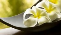 Ajurvédske prírodné masážne oleje a bylinné doplnky-frangipani