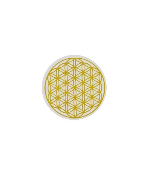 karafa-alladin-family-gold-2-3-l 3